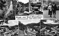 BG7722 bad rippoldsau schwarzwald moorbad types  germany CPSM 14x9cm