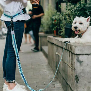 New Reflective Leash Traction Rope Pet Dog Running Belt Metal D-ring Leashes