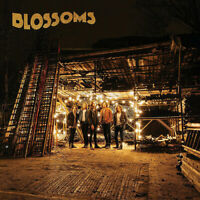 """Blossoms : Blossoms Vinyl 12"""" Album (2016) ***NEW*** FREE Shipping, Save £s"""