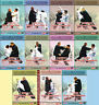 Old-styled Taichi Rushing Fist & Sudden Agile Fist Series - Yuan Zhanguo 11DVDs