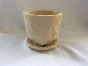 """Vintage 1940s McCoy Pottery SAND DOLLAR Leaf Flower Pot w/Saucer Unmarked HTF 4"""""""