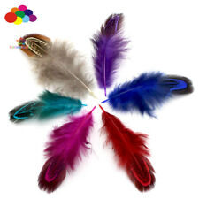 100 pcs 4-7 cm Multi-colour Party Decorative DIY Craft Pheasant Natural Feathers
