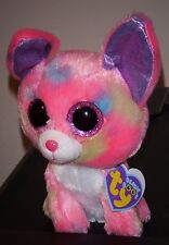 """Ty Beanie Boos ~ DUCHESS 6"""" Chihuahua Dog ~ Exclusive ~ MINT with MINT TAGS RARE"""