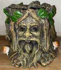Latex Mould for making This Lovely Tree Man Pot