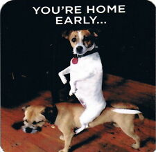 """""""You're Home Early"""" Playful Dogs Cork Backed Coasters New Fast Ship! Jack Russel"""