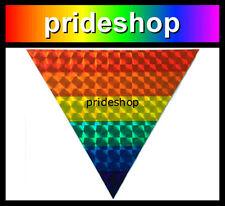 Rainbow Holographic Triangle Fridge Car Anywhere Magnet Gay Lesbian Pride #159