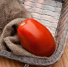 Romeo Roma Huge Italian Paste Heirloom Tomato Premium Seed Packet