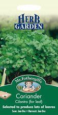 Mr Fothergills - Pictorial Packet - Herb - Coriander Cilantro - 150 Seeds