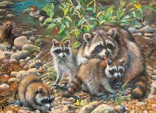 Jigsaw Puzzle Animal Wild Raccoon Family 350 Multi-sized pieces NEW
