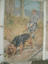 Vintage Edwin Megargee Bloodhound book plate 1958 National Geographic Magazine