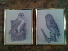 Vintage Set of 2 Framed Owl Picture Art Prints by E. Rambow