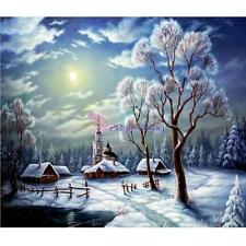 DIY 5D Diamond Full Drill Snow Scene Painting Cross Stitch Kit Embroidery Decor