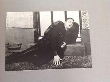 """ALAIN DELON - """" L'INSOUMIS """" - PHOTO DE PRESSE 14x20cm"""