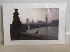 Houses of Parliament professional photograph print. London. Fabrice Jouet