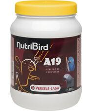 NutriBird A19, 800 g, für Aras, Graupapageien & Edelpapageie