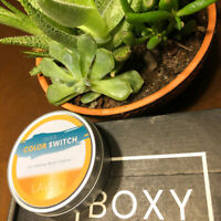 Lavish Quick Color Switch Dry Brush Cleaner New Boxycharm