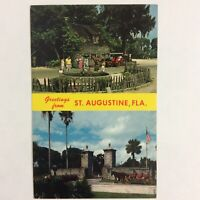 "Vintage Post Card Greetings from Augustine Florida 3.5""x5.5"" Unposted"
