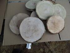 5 Baumscheiben, Holzscheibe, 15-20 cm, Eiche, Esche, Robinie, Birne