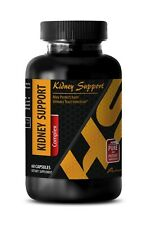 Urinary relief tablets - KIDNEY SUPPORT 700MG 1B - kidney support feline