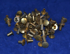 """Tubular Rivets - Brass Plated - 4/16"""" - Pack of 150 (B106)"""