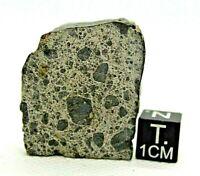 Achondrite Meteorite NWA 12537 Eucrite genomict breccia from outer space