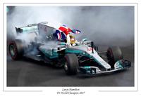 Lewis Hamilton 2017 F1 Formula One World Champion Poster Print