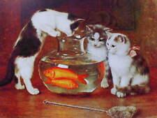 Kittens Gold Fish Bowl