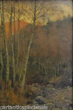 Painting Picture DIPINTO OLIO SU Cartone ITALIANO FRANCHI Bosco autunnale Pescia