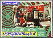 CINEMA-fotobusta L'ESPERIMENTO DEL DR.K hedison,owens,price,NEUMANN