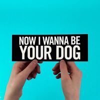 """The Stooges Sticker! """"I Wanna Be Your Dog"""" iggy pop , the passenger, raw power"""