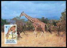 KENIA MK FAUNA GIRAFFE KENYA ANIMALS MAXIMUMKARTE CARTE MAXIMUM CARD MC CM bf22