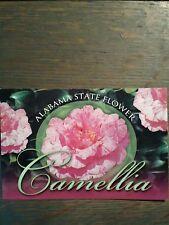 BEAUTIFUL VINTAGE PHOTO POST CARD ALABAMA STATE FLOWER CAMELLIA JACKSON ALABAMA