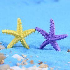 4 pcs Miniature Starfish Fairy Garden Animal Ornament Terrarium Supplies