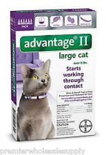 Advantage II for Large Cats Over 9 lbs