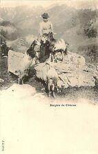 CARTE POSTALE SUISSE BERGERE DE CHEVRES