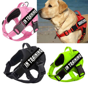 Outdoor Walking Dog Harness Reflective Puppy Pet No-Pull Padded Serivce Vest