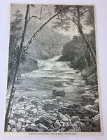 1885 magazine engraving ~ FALLS OF TIJUCA ~ Brazil