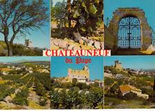 CHATEAUNEUF-DU-PAPE multivues vieux château et vignoble vin