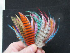 metz and whitings feathers 100 mixed 3-7inches flytying craft
