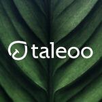 taleoo