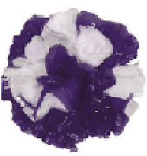 "25 Car Limo wedding Decoration Plastic Pom Poms Flower 4"" - purple and white"