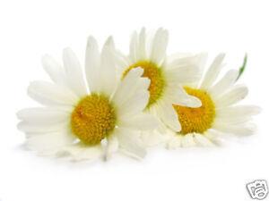 Naturel Camomille Eau Florale 250ml