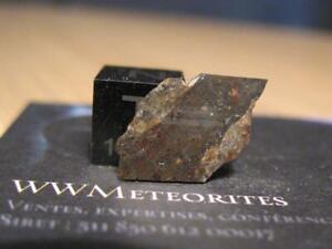 Meteorite NWA 11451 - Eucrite polymict, shocked