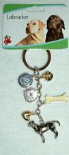 Little Gifts Labrador Retriever dog Charm key chain -Best In Show-I Love My Dog+