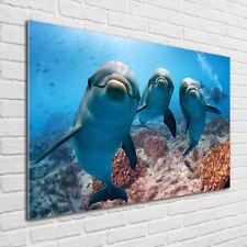 Glas-Bild Wandbilder Druck auf Glas 100x50 Deko Tiere Delfine Bilder