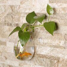 Egg Shaped Transparent Wall Hanging Vase Plant Flower Glass Bottle Home Decor SG