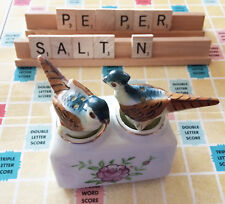 Hand-Painted Vintage Porcelain Bird Salt & Pepper Shakers in Unique Holder-Rare!