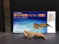 Yujin Takara Kaiyodo Retired Japan Exclusive Mantis Shrimp Figure