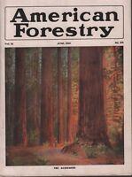 American Forestry June 1916 N W Brenizer Sheldon Ridsdale 081518DBE3