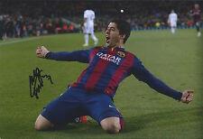 LUIS SUAREZ - Hand Signed 12x8 Photo - Barcelona Liverpool Uruguay - Football